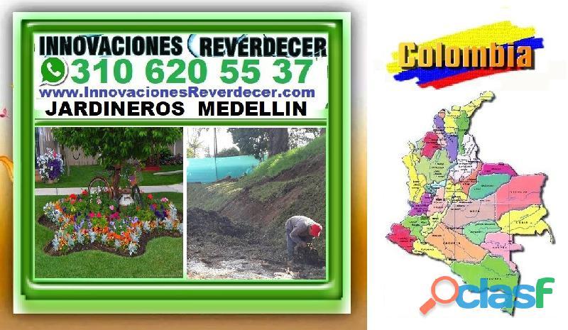 ⭐ INNOVACIONES REVERDECER Medellin, JARDINERO, VIVERO, SILLETAS, Bello, Itagui, Envigado, Apartado,