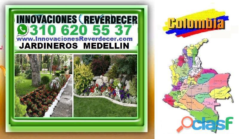 ⭐ INNOVACIONES REVERDECER Medellin, JARDINERO, VIVERO, SILLETAS, Bello, Itagui, Envigado, Apartado, 8