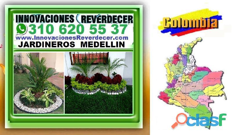 ⭐ INNOVACIONES REVERDECER Medellin, JARDINERO, VIVERO, SILLETAS, Bello, Itagui, Envigado, Apartado, 6