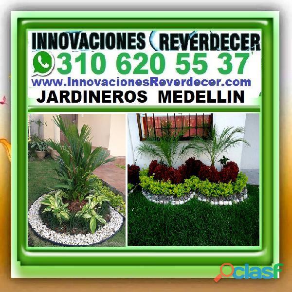 ⭐ INNOVACIONES REVERDECER Medellin, JARDINERO, VIVERO, SILLETAS, Bello, Itagui, Envigado, Apartado, 2