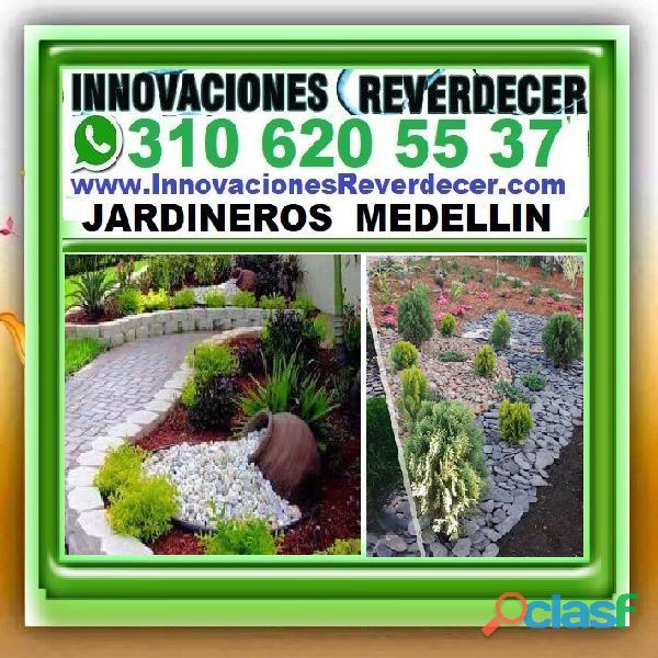 ⭐ INNOVACIONES REVERDECER Medellin, JARDINERO, VIVERO, SILLETAS, Bello, Itagui, Envigado, Apartado, 1