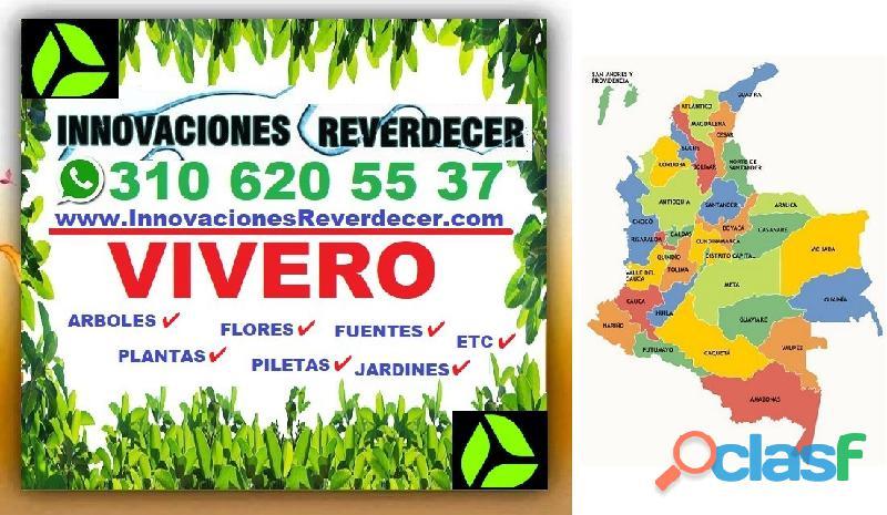 ⭐ INNOVACIONES REVERDECER Medellin, JARDINERO, VIVERO, SILLETAS, Bello, Itagui, Envigado, Apartado, 13