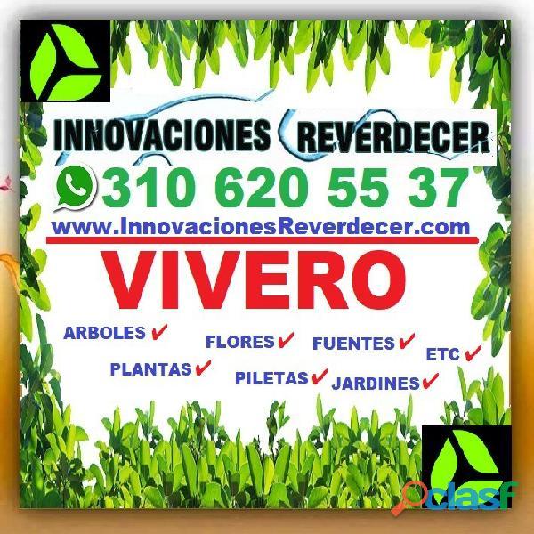 ⭐ INNOVACIONES REVERDECER Medellin, JARDINERO, VIVERO, SILLETAS, Bello, Itagui, Envigado, Apartado, 15