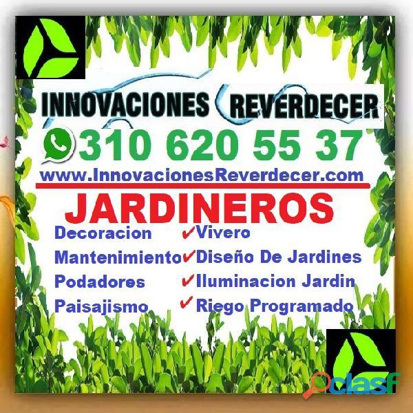 ⭐ INNOVACIONES REVERDECER Medellin, JARDINERO, VIVERO, SILLETAS, Bello, Itagui, Envigado, Apartado, 18
