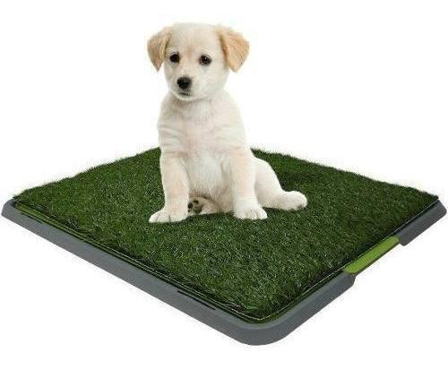 Tapete Grande Baño Entrenador Para Mascota Perros