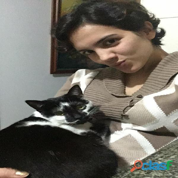 Cuidadora de gatos y perros a domicilio