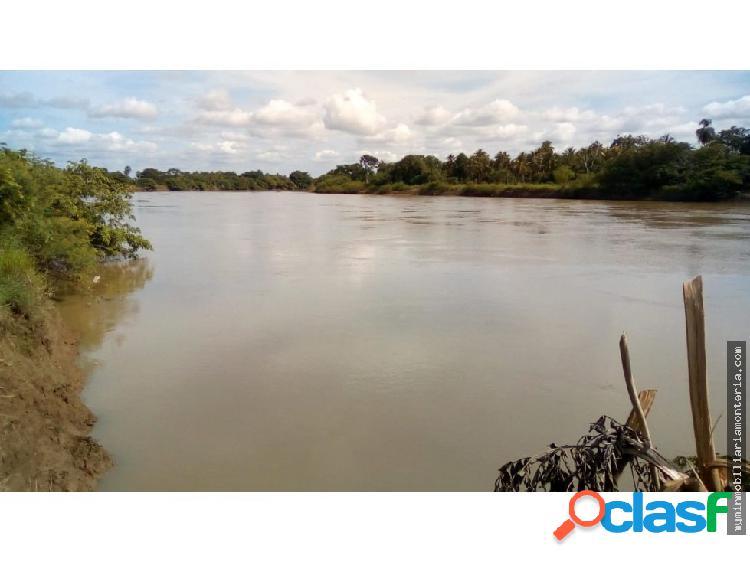 Vende 2 hectáreas a orilla del río sinu