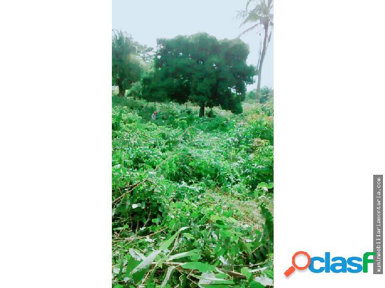 Vende lote 7 hectáreas en la via san antero