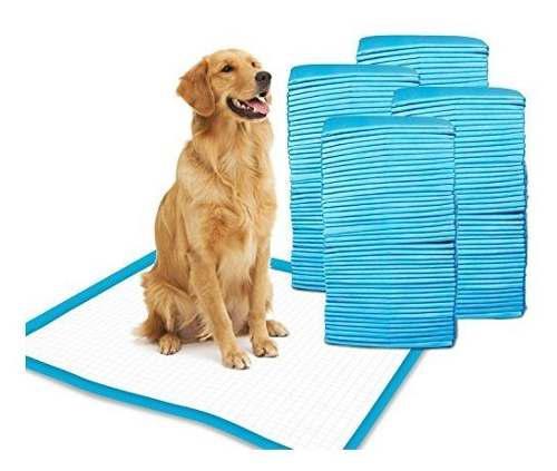 Almohadillas Para Orinar Para Perros Y Orejeras De Entrenami