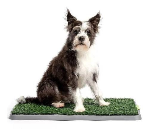 Tapete Baño Entretenimiento Perro Cachorro Puppy Potty Pad