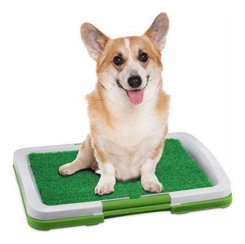 Tapete Entrenamiento Perros Baño Puppy Potty Pad Artificial
