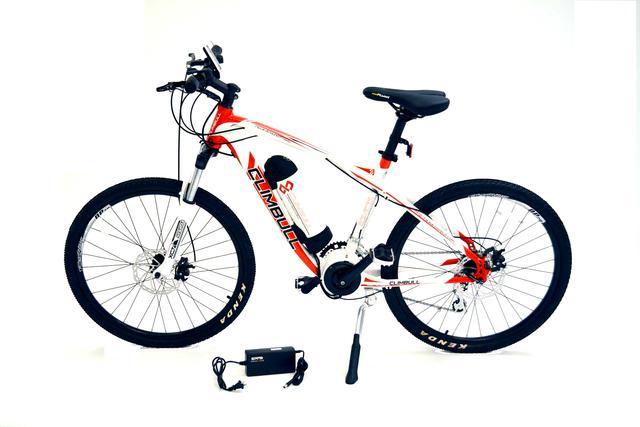 Bicicleta todo terreno con asistencia electrica