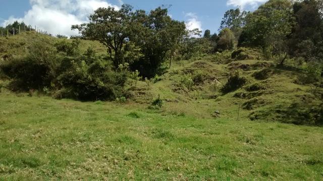 Se ofrece venta lote rural en guarne 12.800 m2 cerca a