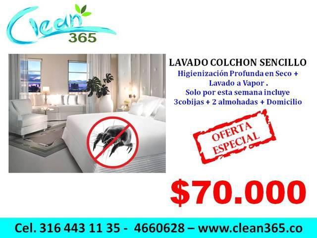 Lavado muebles, colchones, tapiceria autos, tapetes