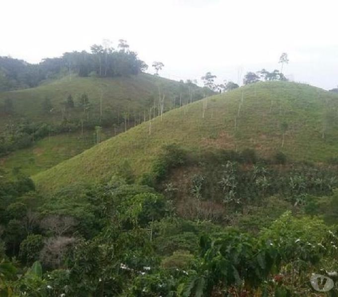 Finca en San Carlos Antioquia