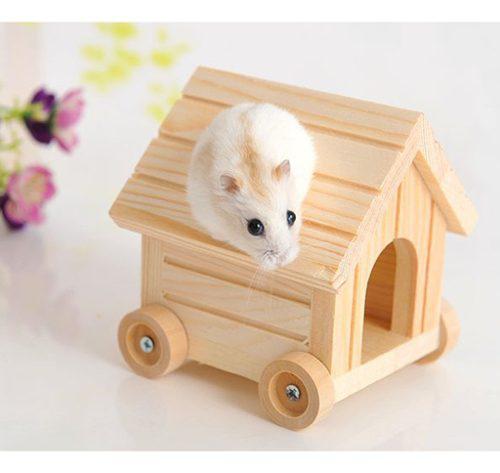 Casa sueño hámster animal doméstico accesorios fácil de