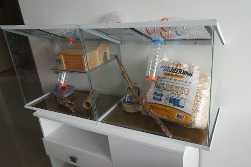 Jaula / terrario con muchos accesorios para roedores