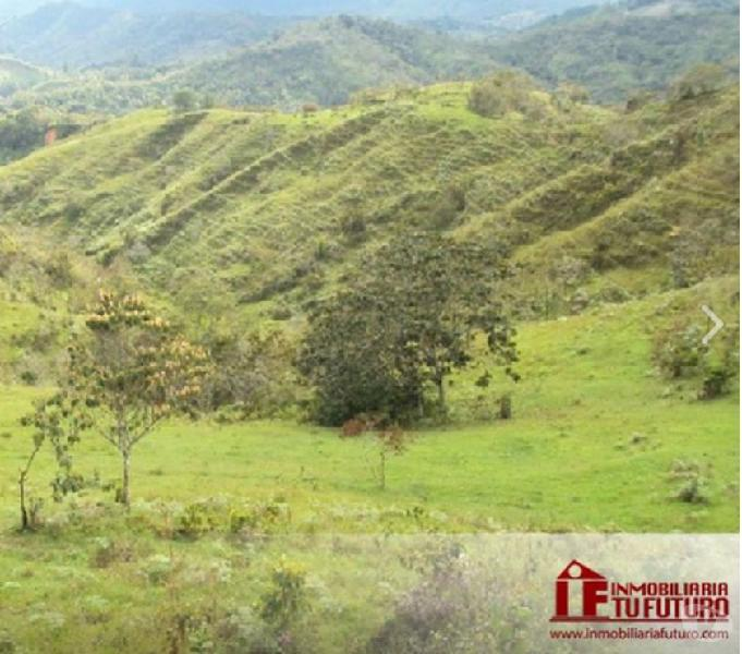 Se vende finca ganadera en Guadalupe Antioquia