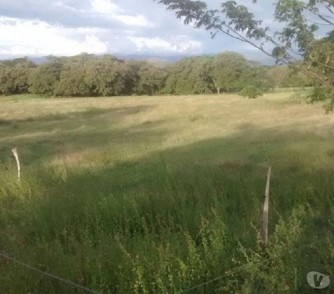 Vendo finca o lote de 100 hectáreas para construir casas