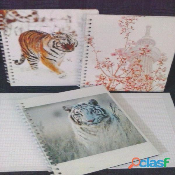 Impresion de Cuadernos Personalizados Tel 4744958 Bogotá 2