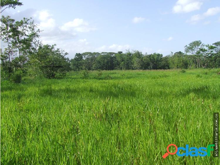 18 hectareas en venta en villavicencio