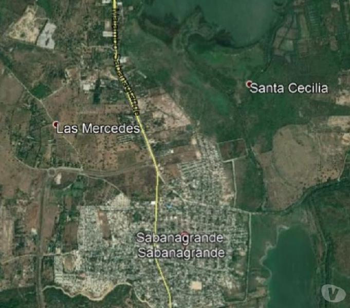 Se vende lote 42.833 mt2 sabana grande sobre via industrial
