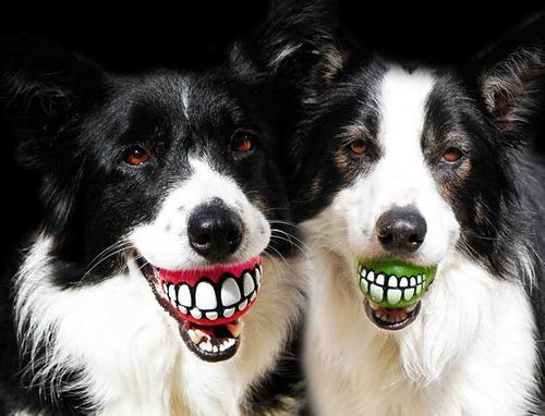 Juguete Para Mascota Pelota Sonriente 1unidad - Envio Gratis
