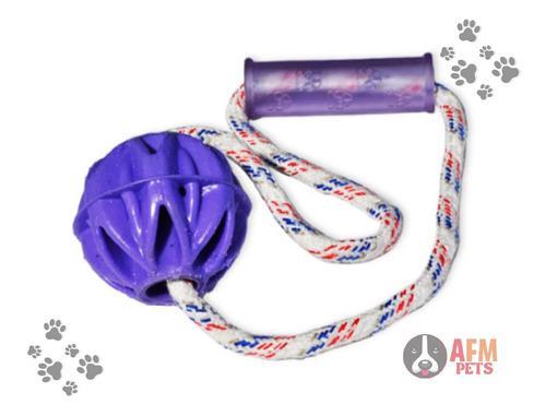 Pelota Loca Para Perro Con Lazo + Obsequio