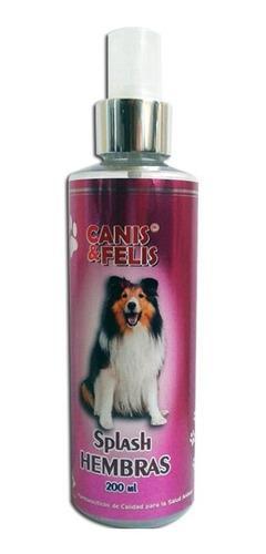 Splash Canis Y Felis Para Hembras Perfume Perros Y Gatos