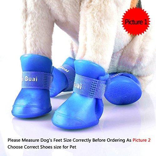 Ocathnon Zapatos Para Perros, Zapatos De Paseo Perro, Zapato