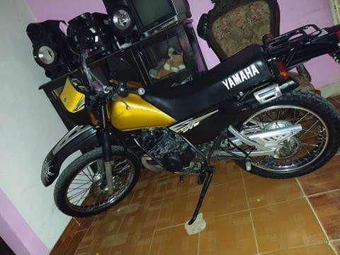 Hermosa dt dorada 125 colombiana