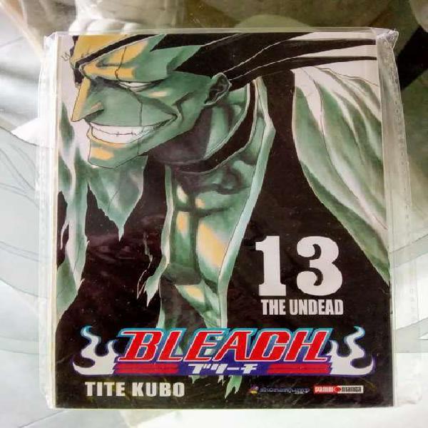 Manga bleach, tomo 13