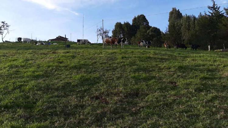Venta de lote vereda perico - municipio de envigado