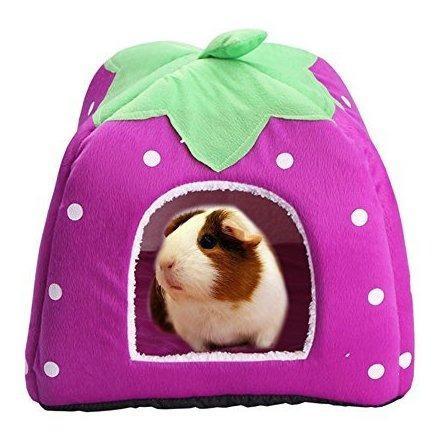 Conejo conejillo de indias hamster cama de la casa lindo ani