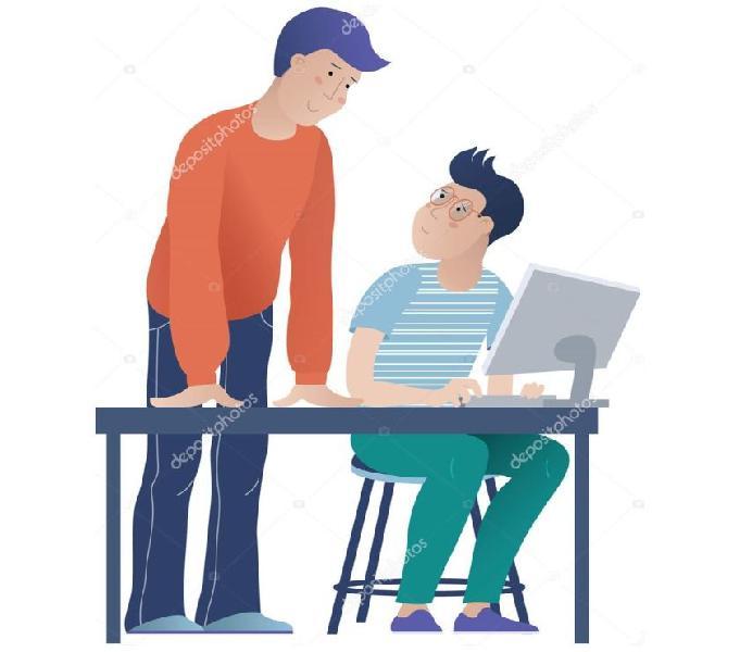 Asesoría tareas individual primaria-secundaria forma