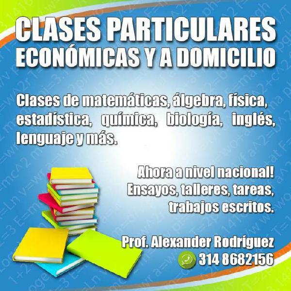 Clases personalizadas de matemáticas, química, biología