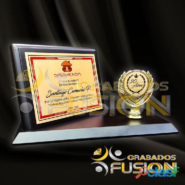 Premiación, trofeos y pines