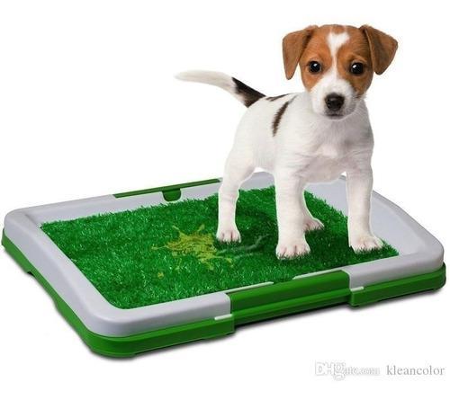 Tapete entrenamiento perros para baño perro pequeño