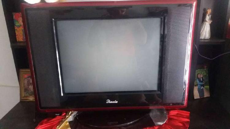 Vendo televisor y multimueble buen precio