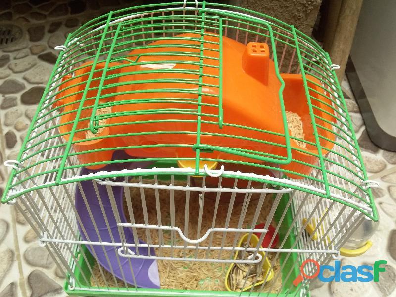 linda jaula para hamster 1