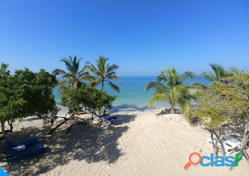 Terreno ideal para proyectos isla barú