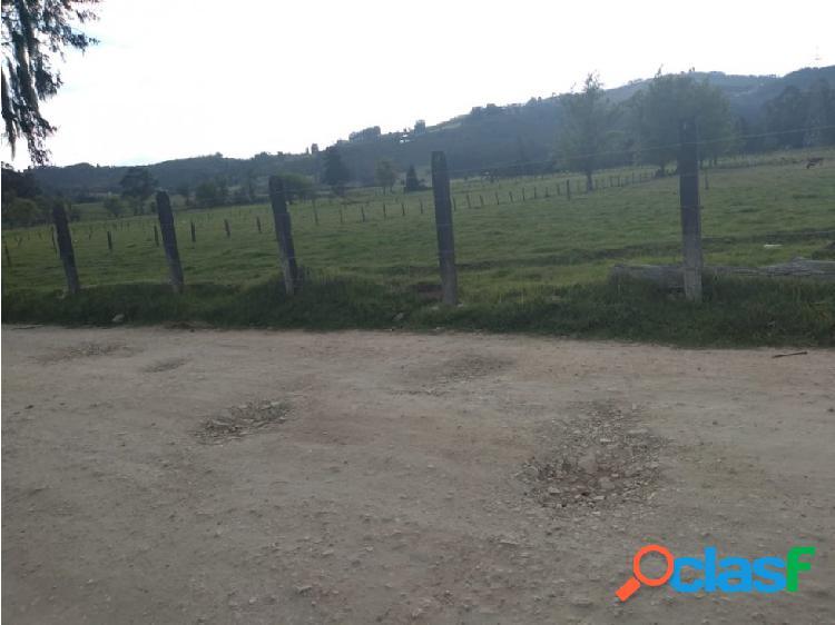 LOTE 12.500 M2 EN PAIPA PANTANO DE VARGAS 2