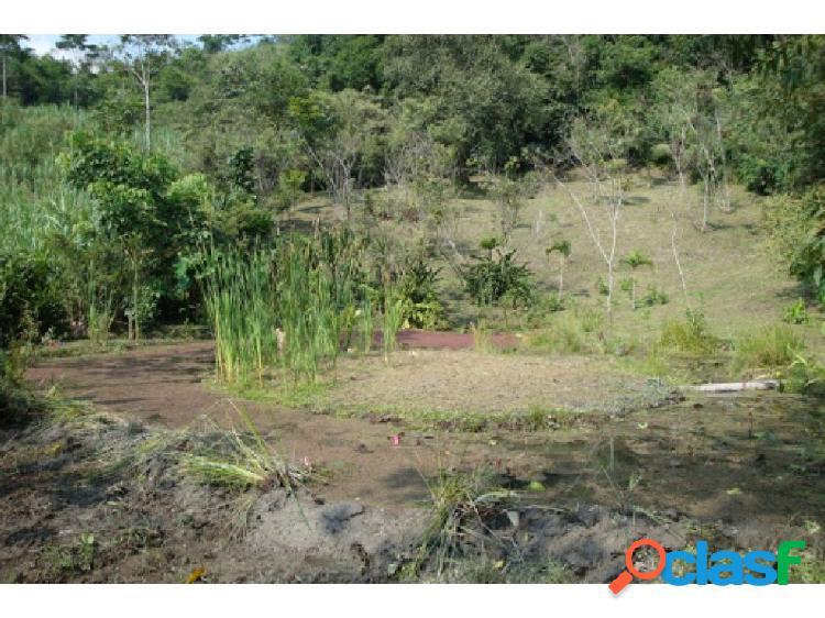 Maat vende lote villeta, rio dulce 18.400m2 $400 millones