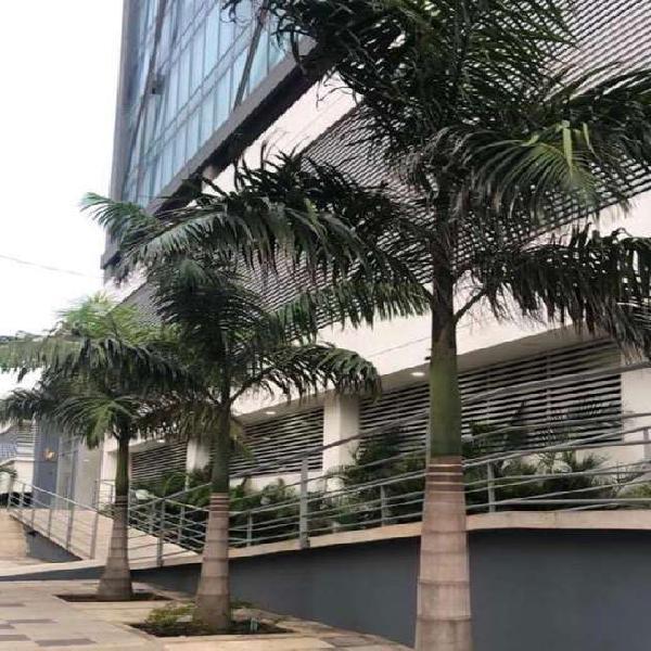 Venpermuto oficina consultorio en cartagena manga edificio