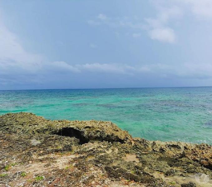 Predios en venta isla baru- cartagena de indias