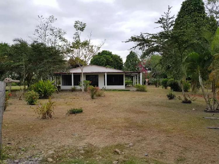 Se vende casa quinta sector campestre cerca a apiay