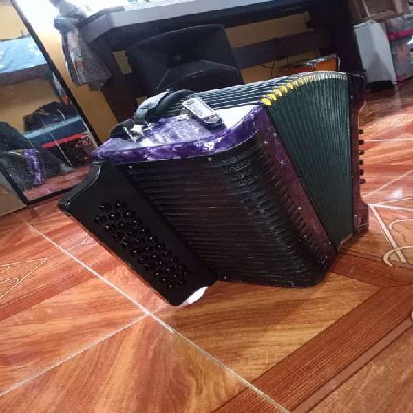 Acordeon rey vallenato adg
