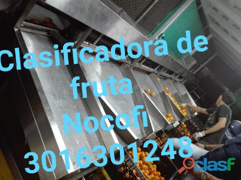 CLASIFICADORA DE FRUTA Y HORTALIZAS