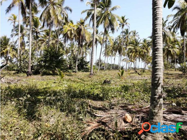 Lote de playa en venta sector mendihuaca
