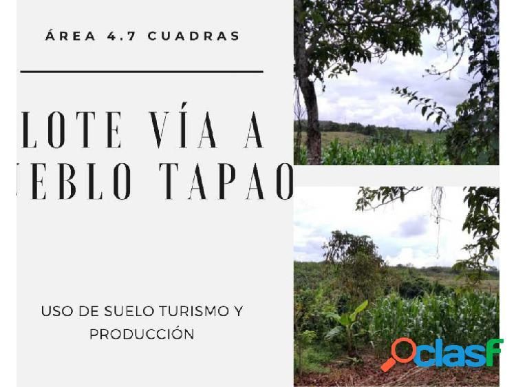 Lote para proyecto turistico y productivo pueblo tapao quindio